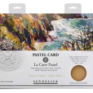 Sennelier Pastel Card pack - 6 sheets 40x30cm - Monochrome Yellow Naples